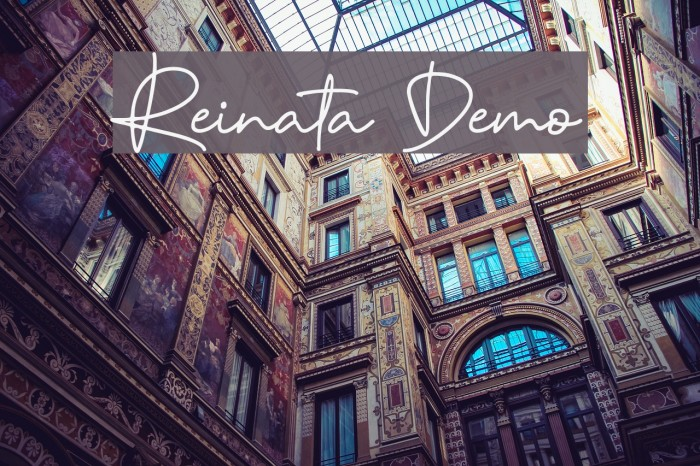 Reinata Demo Polices examples