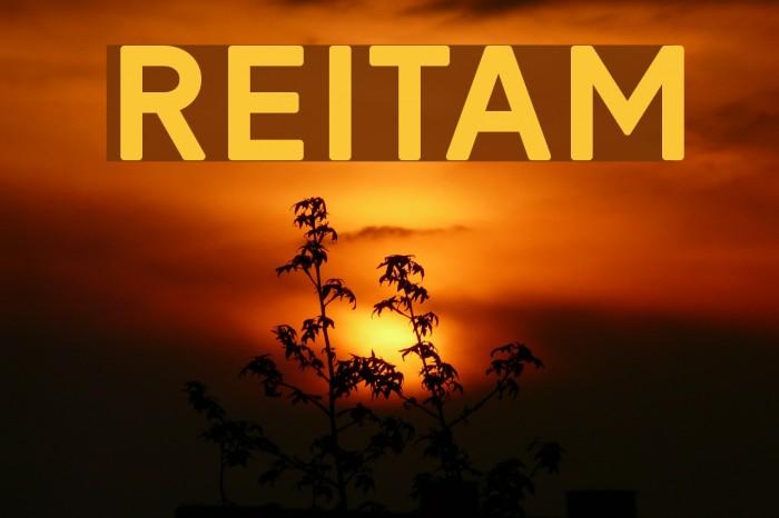 Reitam Polices examples