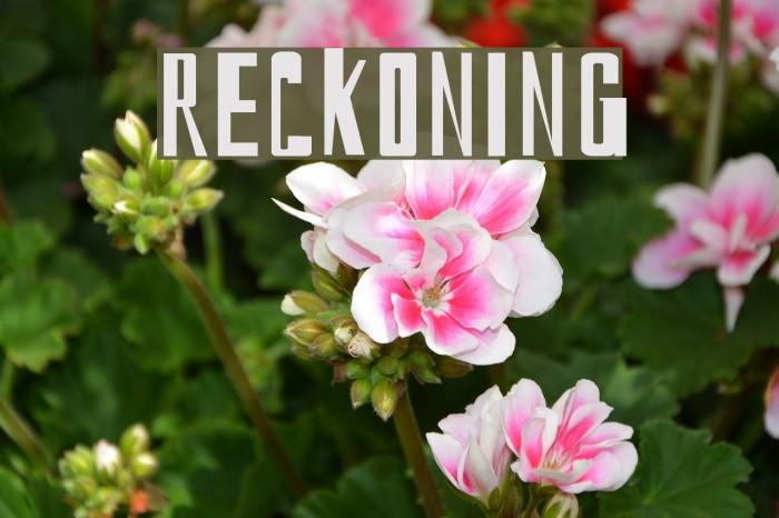 reckoning Fonte examples