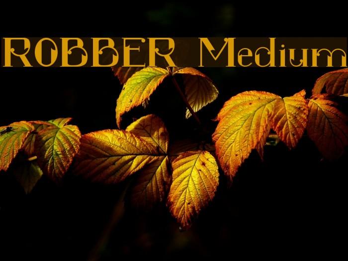 ROBBER Medium Font examples