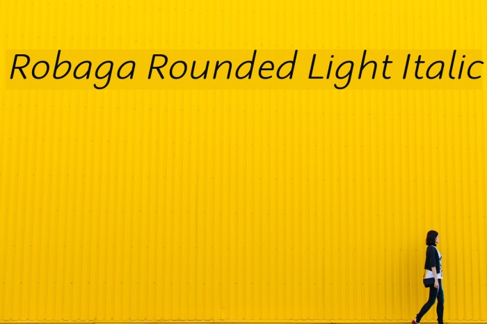 Robaga Rounded Light Italic Font examples