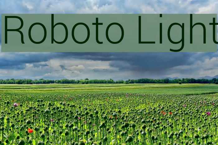 Roboto Light Font examples