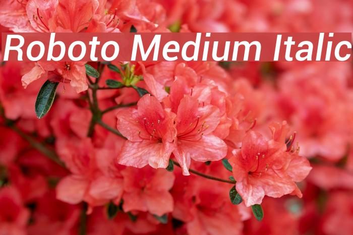 Roboto Medium Italic Font examples