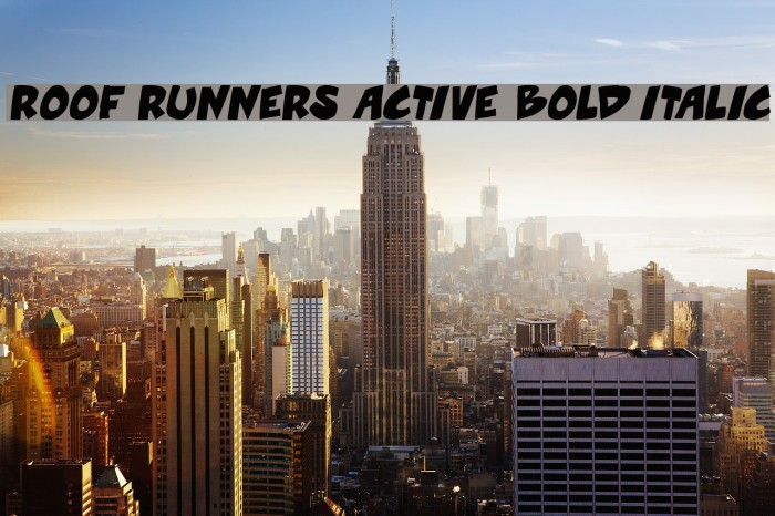 Roof Runners Active Bold Italic Font Free Fonts Download