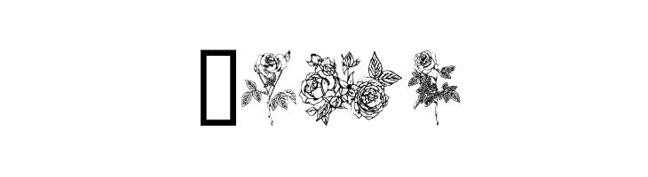 Rose  Free Fonts Download