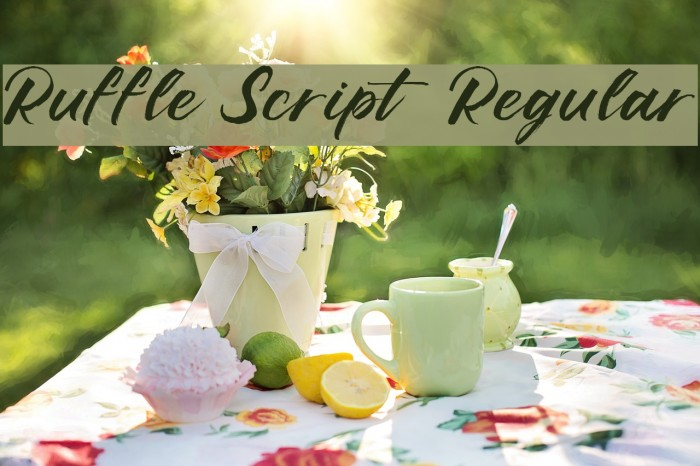 Ruffle Script DEMO Regular Polices examples