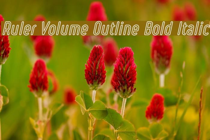 Ruler Volume Outline Bold Italic Font examples