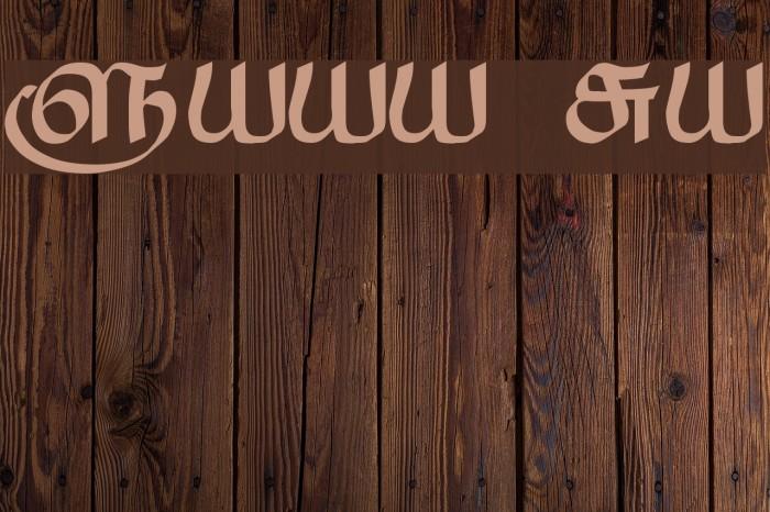 Saavaeri Regular Font examples