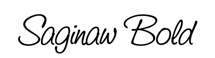 Saginaw  Bold  नि: शुल्क फ़ॉन्ट्स डाउनलोड