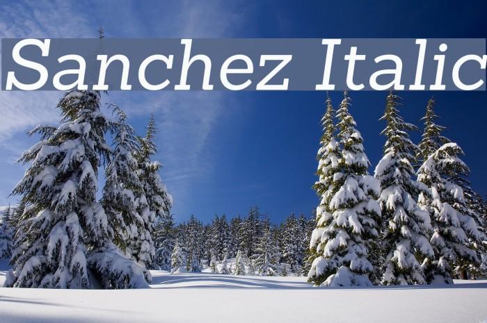 Sanchez Italic Font examples