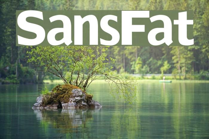 SansFat Font examples