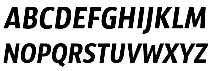 SansusWebissimo-Italic फ़ॉन्ट अपरकेस