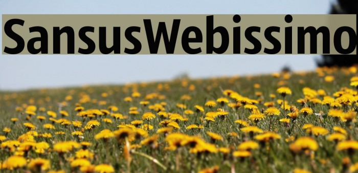 SansusWebissimo Polices examples
