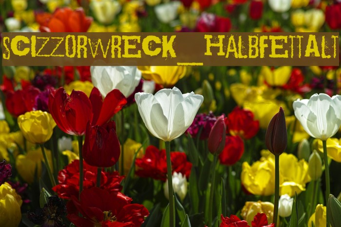 Scizzorwreck_HalbfettAlt Schriftart examples