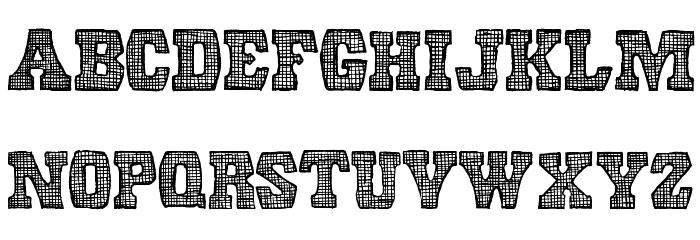 Screen Door Regular Font LOWERCASE