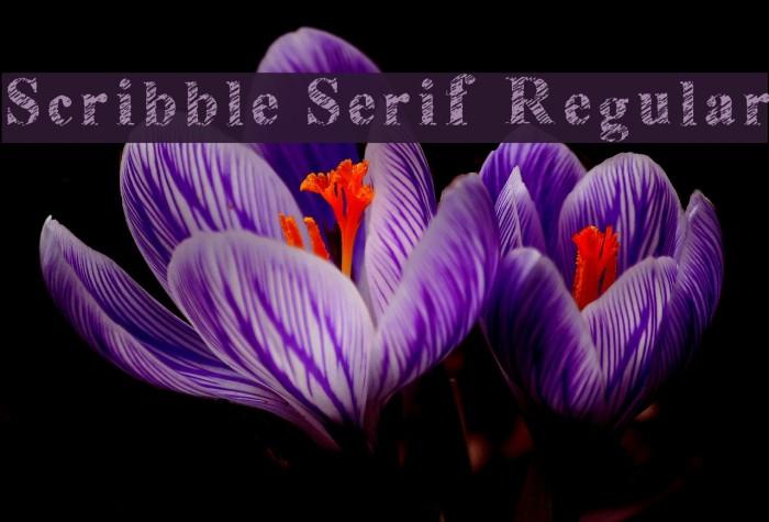Scribble Serif Regular Font examples