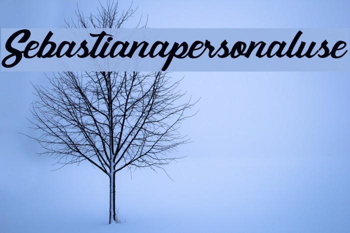 Sebastianapersonaluse Шрифта examples