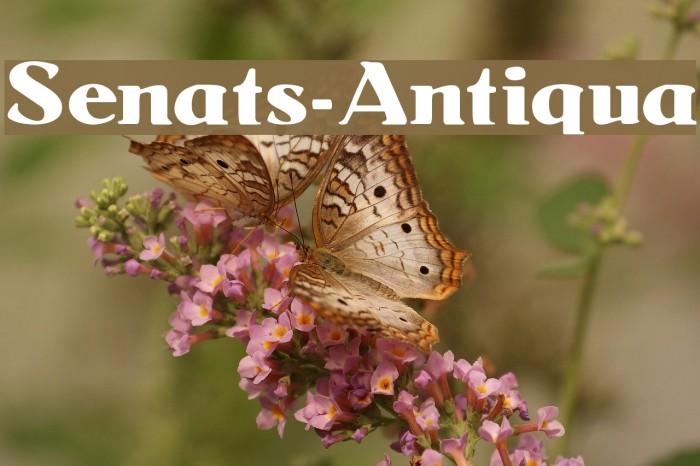 Senats-Antiqua Fonte examples