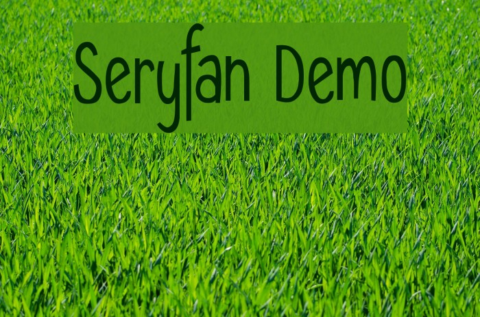 Seryfan Demo Polices examples