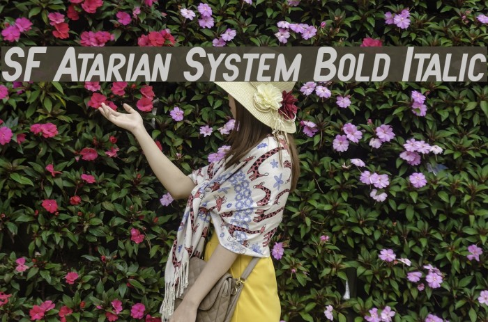 SF Atarian System Bold Italic फ़ॉन्ट examples