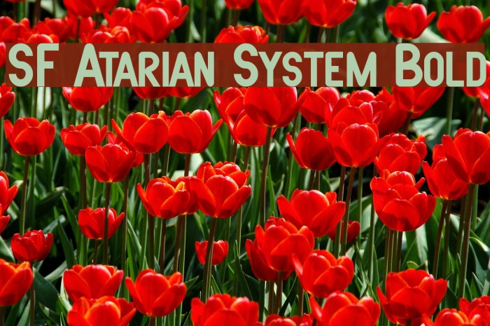 SF Atarian System Bold फ़ॉन्ट examples