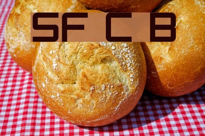 SF Chaerilidae Bold फ़ॉन्ट examples
