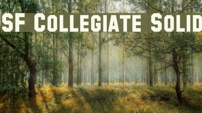 SF Collegiate Solid Font examples