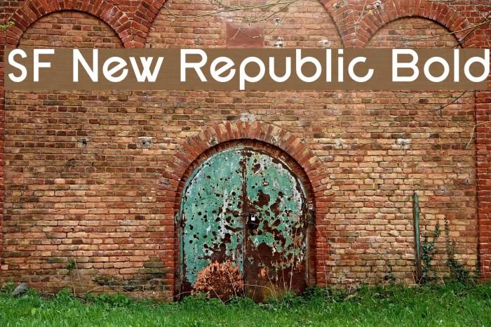 SF New Republic Bold फ़ॉन्ट examples