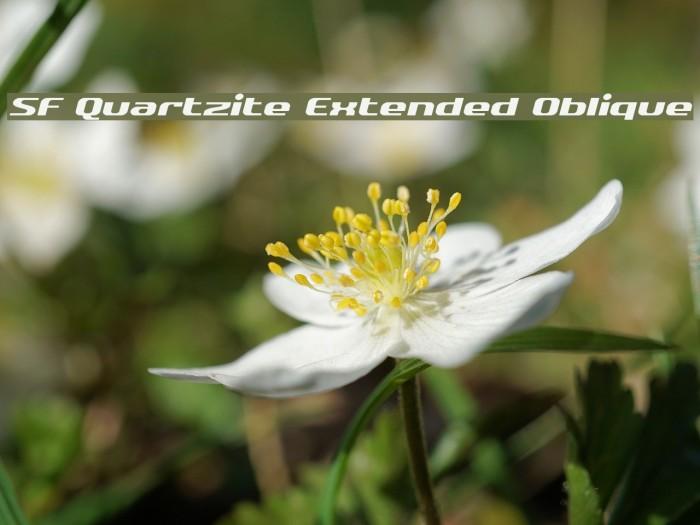 SF Quartzite Extended Oblique Fonte examples