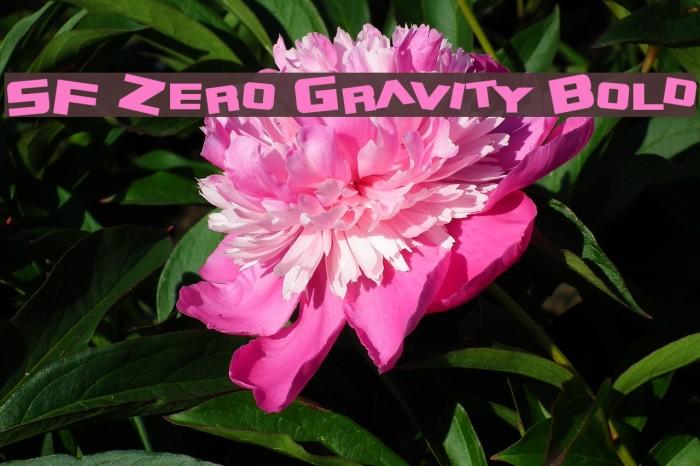 SF Zero Gravity Bold Caratteri examples