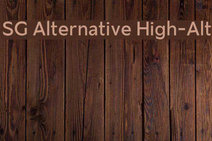SG Alternative High-Alt Font examples