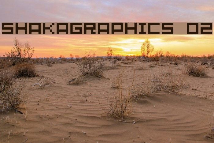 SHAKAGRAPHICS 02 Schriftart examples