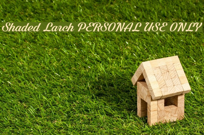Shaded Larch PERSONAL USE ONLY Schriftart examples