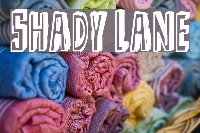 Shady Lane Font examples
