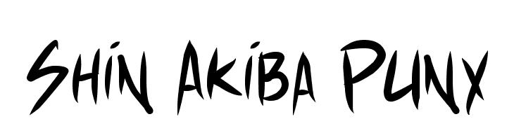 Shin Akiba Punx  Скачать бесплатные шрифты