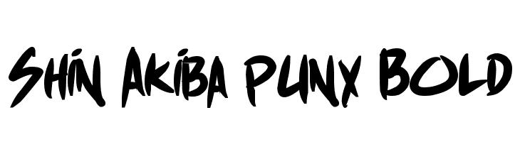 Shin Akiba punx Bold  Скачать бесплатные шрифты