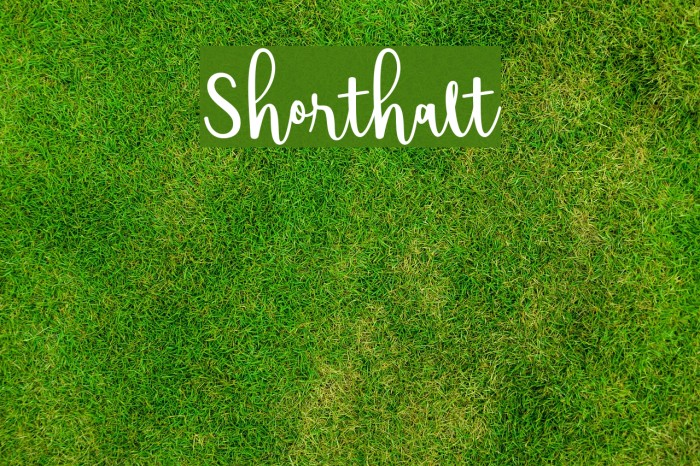 Shorthalt Font examples