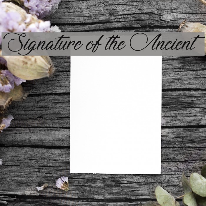 Signature of the Ancient Font examples