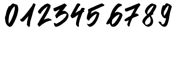 Signgual Regular لخطوط تنزيل حرف أخرى