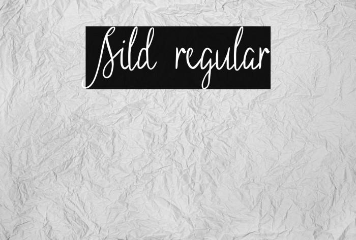 Sild regular 字体 examples