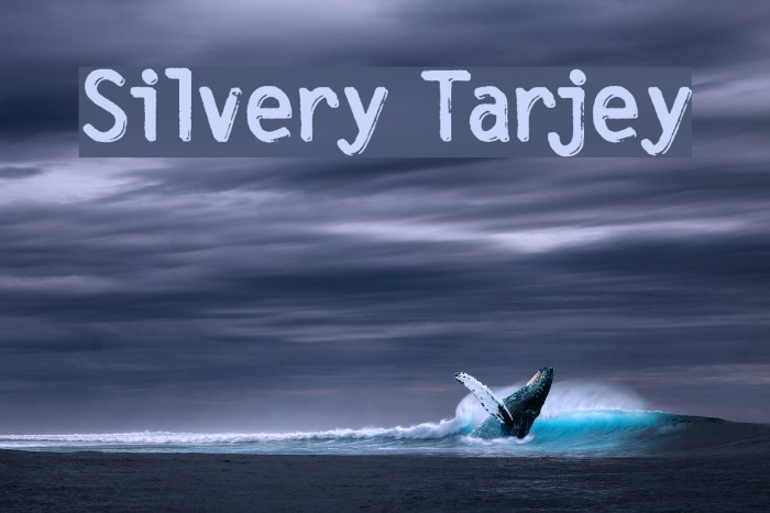 Silvery Tarjey फ़ॉन्ट examples