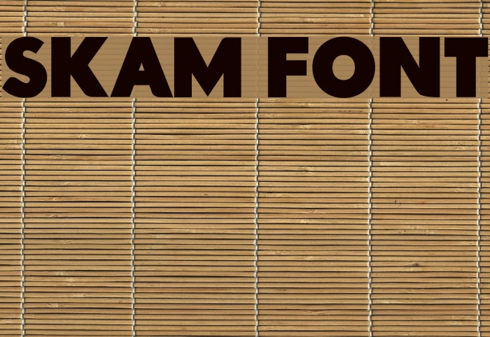 Skam Font フォント examples