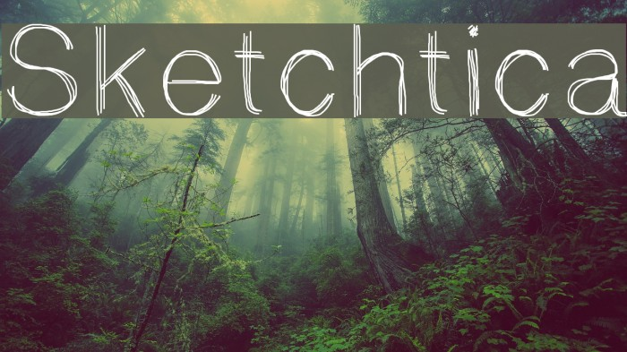 Sketchtica Polices examples