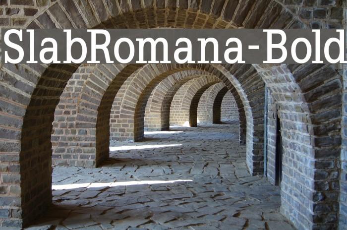 SlabRomana-Bold Font examples