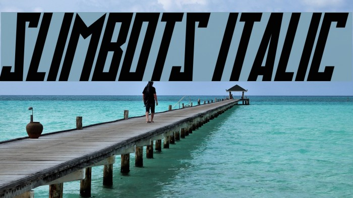 Slimbots Italic Шрифта examples