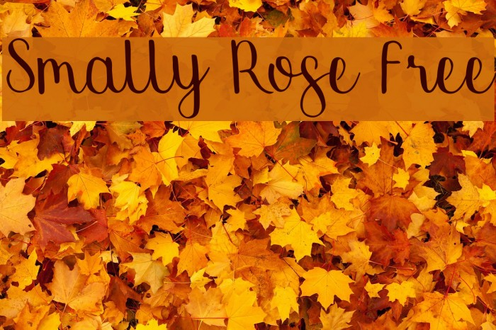 Smally Rose Free Шрифта examples