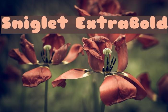 Sniglet ExtraBold Font examples