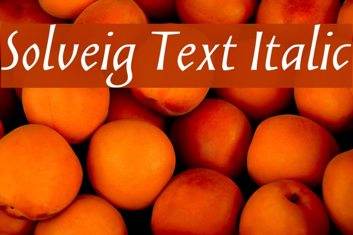 Solveig Text Italic Fonte examples