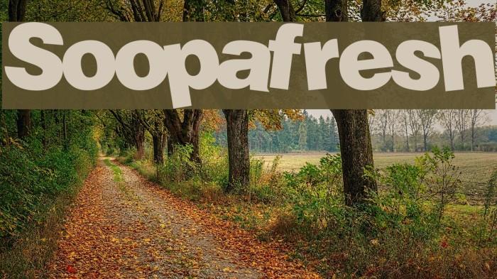 Soopafresh font download.