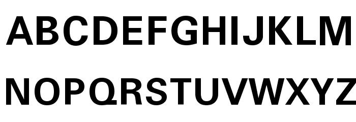 Sophia Nubian Bold Font UPPERCASE
